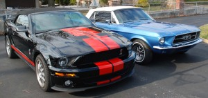 Copy of mustangs